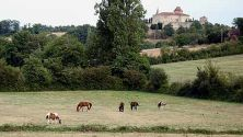 Gascony's Secret Treasures
