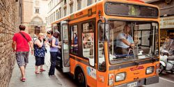 Using the Florence Bus System