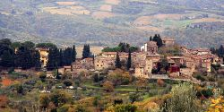 Florence Day Trip: Wine and hiking in Greve in Chianti