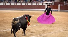 Bullfighting In Madrid: Tradition or terror?