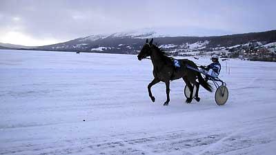 Horserace on a Frozen Lake in Åre