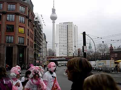 Bunnies take Berlin!