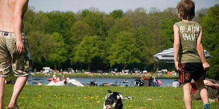 Outdoor fun at Amsterdam Bos. Photo by Edwin Nollen.