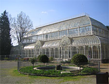 The 19th-century greenhouse
