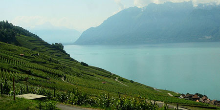 The Lavaux region on the banks of Lake Geneva