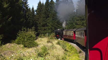 A steam engine chugging along the Harz rail network. All photos © hidden europe magazine
