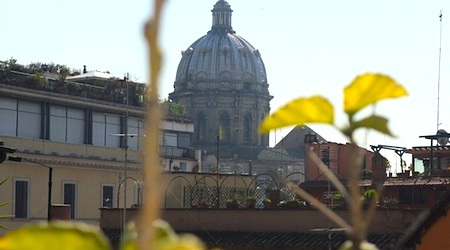 The view from the rooftop terrace at the Albergo del Sole, near the Campo de' Fiori.