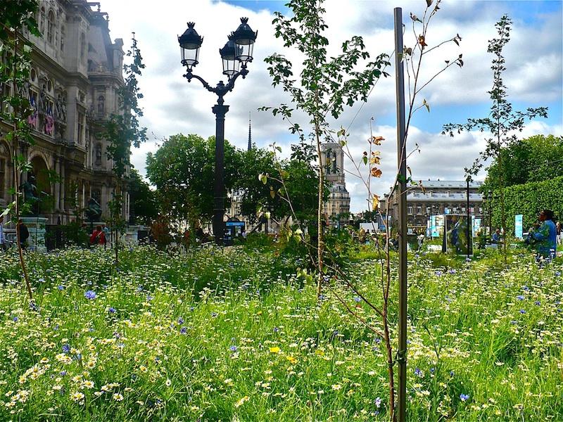 Ephemeral Garden in Paris 2