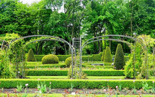The rose garden Photo: manu