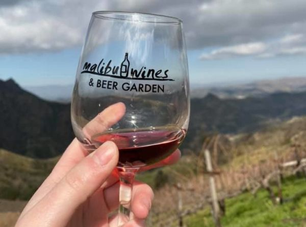 person holding wine glass with mountain views in the distance
