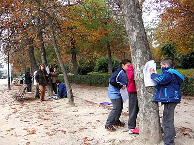 Paseo Parterre in Madrid's Retiro Park